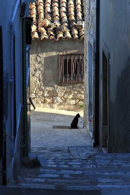 il guardiano del vicoletto di rino_savastano