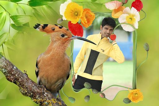Birds Photo Frames