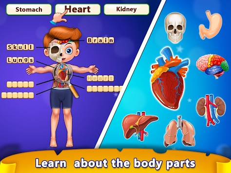 Download basic skill learning human body parts apk latest version basic skill learning human body parts poster ccuart Gallery