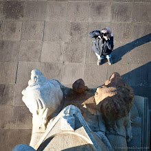 Photo: Looking down, Looking up