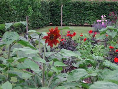 Walled Garden Scampston