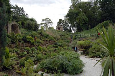 Brodsworth Hall fern garden 1