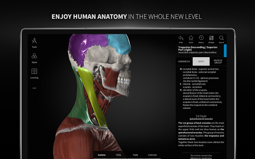 Anatomyka - Interactive 3D Human Anatomy 1.1.1 screenshots 9