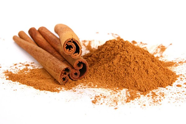 CinnamonCinnamon is a spice obtained from the inner bark of several trees of the...
