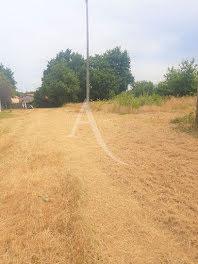 terrain à La Limouzinière (44)