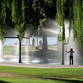 Summertime by Sean Leland - City,  Street & Park  City Parks ( willows, spray, park, fountains, water park, silhouette, summer,  )