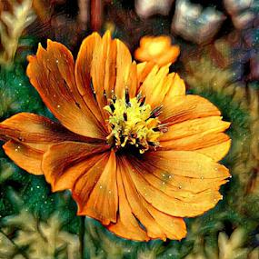 Marigold Digital Painting by Arjun Madhav - Digital Art Things ( orange flower, real photograph edited to painting art, real photograph edited to digital art, marigold, digital drawing, flower drawing, digital painting, painting, digital flower, drawing, yellow flower )