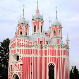 The Chesmenskaya church by Svetlana Saenkova - Buildings & Architecture Places of Worship ( pink, russia, church, design, silver, vertical, lines, unusual,  )