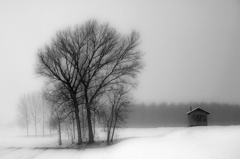 la casetta tra le neve di antonioromei