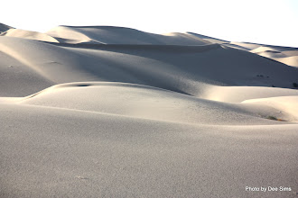 Photo: (Year 3) Day 37 - Sand Dunes at Glamis