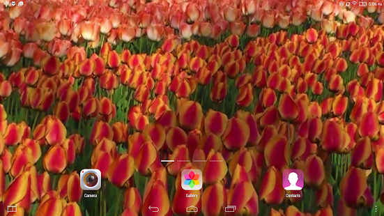 Flowers Live Wallpaper- screenshot thumbnail