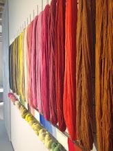 Photo: Le mur de laines