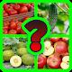 Găseşte Fructe si Legume Android apk