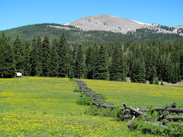 Big John Flat and Shelly Baldy Peak