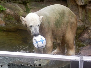 Photo: Hm, eine Runde Ballspielen vielleicht ?