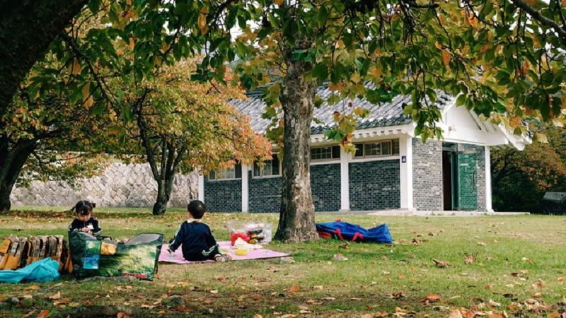Mùa thu ở Gyeongju.