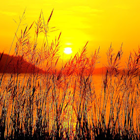 Sunset by Edwin Yepese - Backgrounds Nature ( backgrounds )