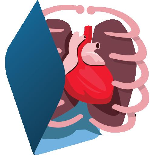 Baixar Sistemas do Corpo Humano 3D para Android