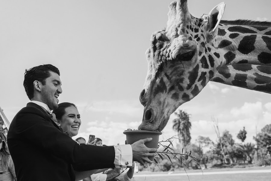 Bryllupsfotograf Jorge Pastrana (jorgepastrana). Foto fra 21.03.2018