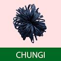 Chungi Game icon
