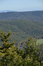 Photo: View from Bald Mtn in Townsend State Park by Linda Carlsen Sperry