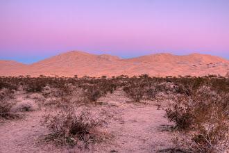 Photo: Kelso Dunes, Mojave National Preserve, January 2009
