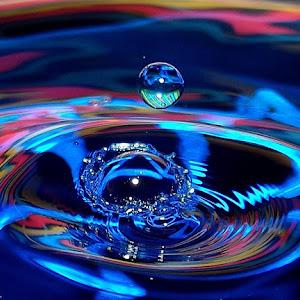 drops May 20a 20121606.jpg