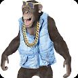 Talking Monkey apk
