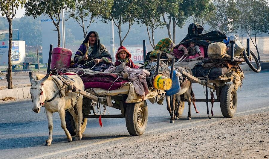 by Mohsin Raza - Transportation Other