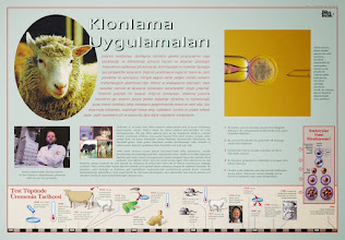 Photo: Klonlama