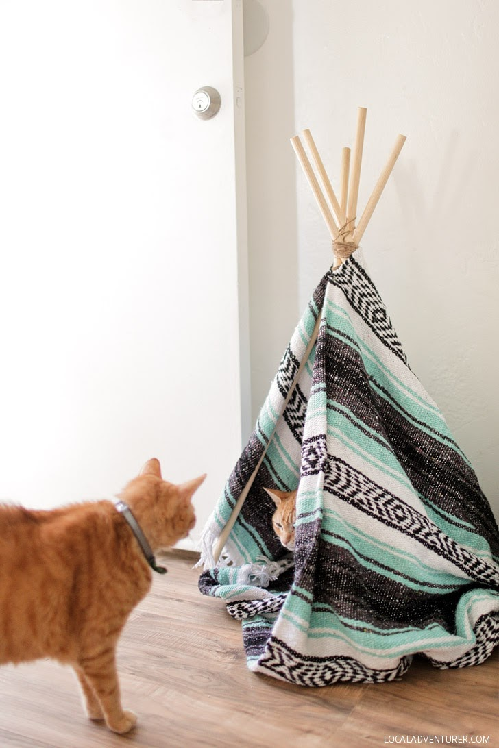 DIY Cat Teepee (How to Build a Tipi).