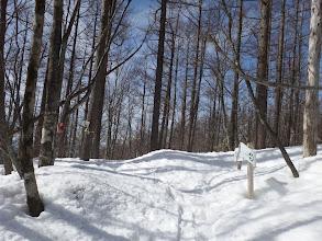 下山分岐点(左が登山道)