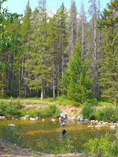 Photo: Mardi and Missy are crossing Straight Creek - about an hour into the hike.