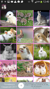 Rabbits Wallpaper - náhled