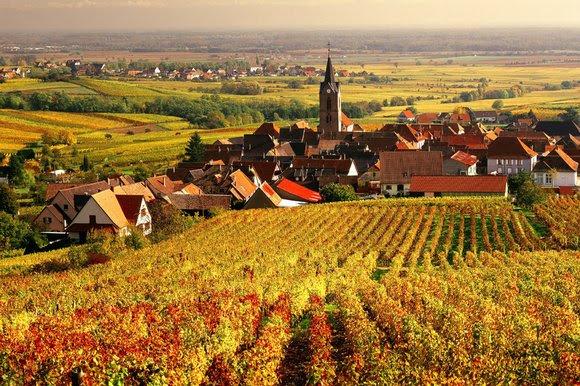 осень во франции, куда поехать осенью во Франции, что посмотреть осенью во Франции, осенью в Париж, осенью в эльзас, осенью в Овернь, осенью в Прованс, осенние фестивали Франция, фестивали осенью во Франции, праздники осенью во Франции, осенние праздники, золотая осень во Франции