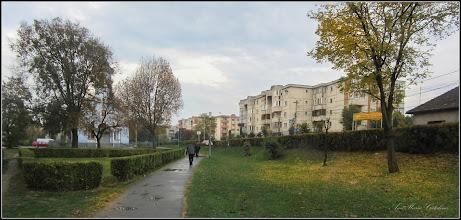 Photo: Calea Victoriei, alee Mr1,  Mr.2 - 2017.10.23