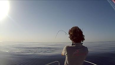 Photo: Luchando duro... la onda que levanta el pescadito es pequeña!