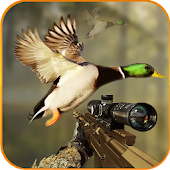 Birds Jungle Sniper Hunting