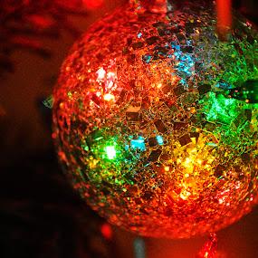 Disco ball! by Eliani Miranda - Public Holidays Christmas ( contrast, ball, tree, colorful, dark, christmas, close up, light )