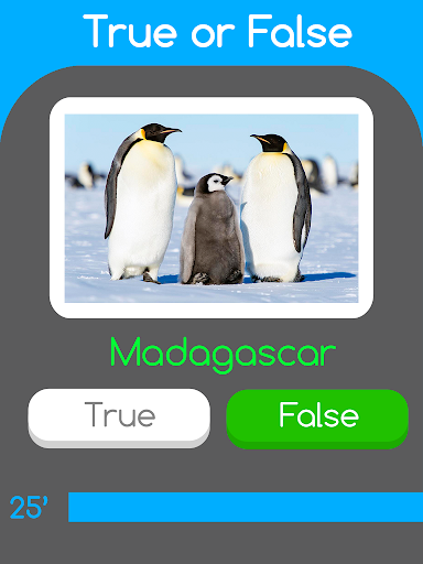 Trivia Movie: True or False