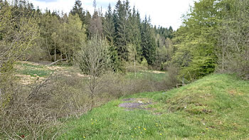 terrain à Xonrupt-Longemer (88)