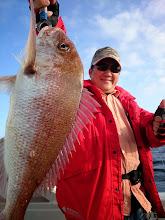 Photo: いいサイズの真鯛キャッチでした! 良く引きました!