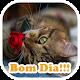 Imagens de Bom Dia Download on Windows