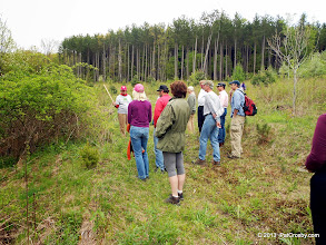 Photo: Invasive species discussion