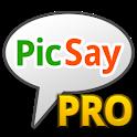 PicSay Pro - Photo Editor icon