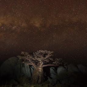 by Fanie Weldhagen - Landscapes Deserts
