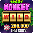 Crazy Monkey Free Slot Machine