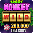 Crazy Monkey Free Slot Machine