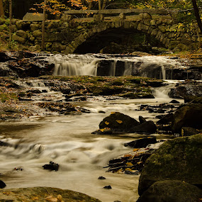 Under the Bridge by Gabrielle Libby - Landscapes Forests ( water, stream, fall, stone, forest, bridge, leaves, rocks, woods, river )