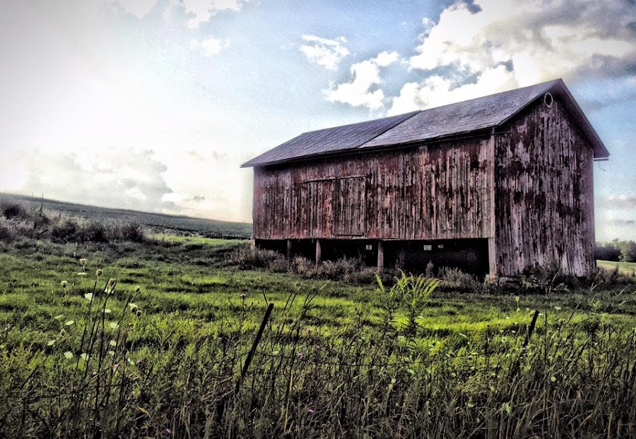 :: the barn :: by Antonio Winston - Novices Only Landscapes (  )